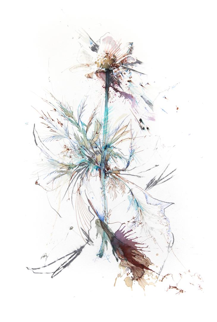 Eyestorm – Carne Griffiths Blog