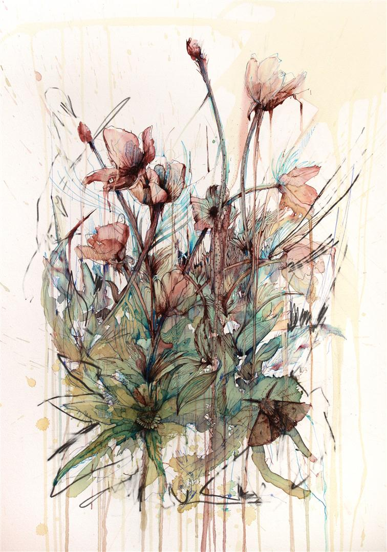 Poppy - Ink and tea on paper by Carne Griffiths